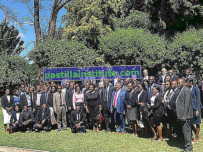 Sydafrikanska utvecklingsgemenskapen