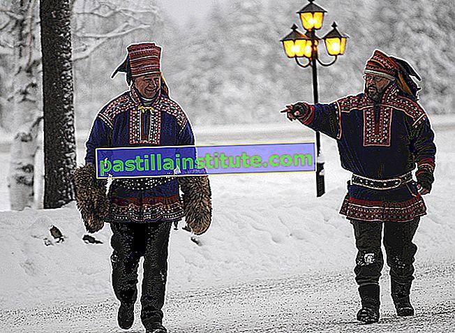 Langue sami