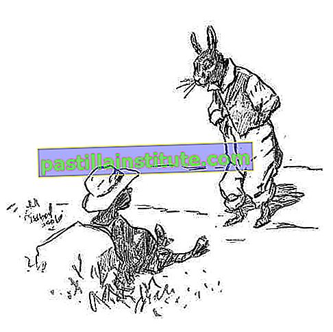 Brer Rabbit and the Tar-Baby, gambar oleh EW Kemble dari The Tar-Baby, oleh Joel Chandler Harris, 1904