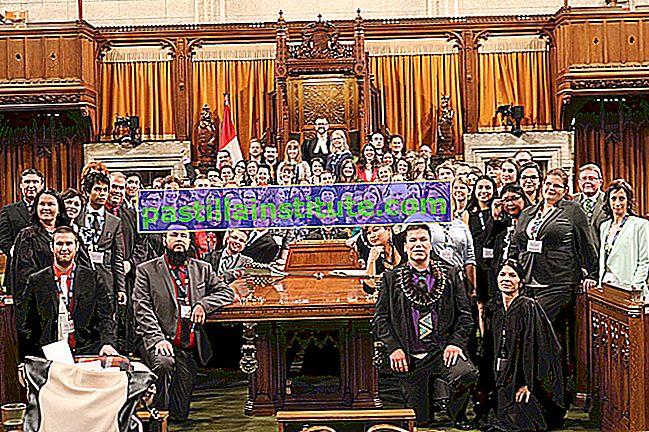 Parlement modèle