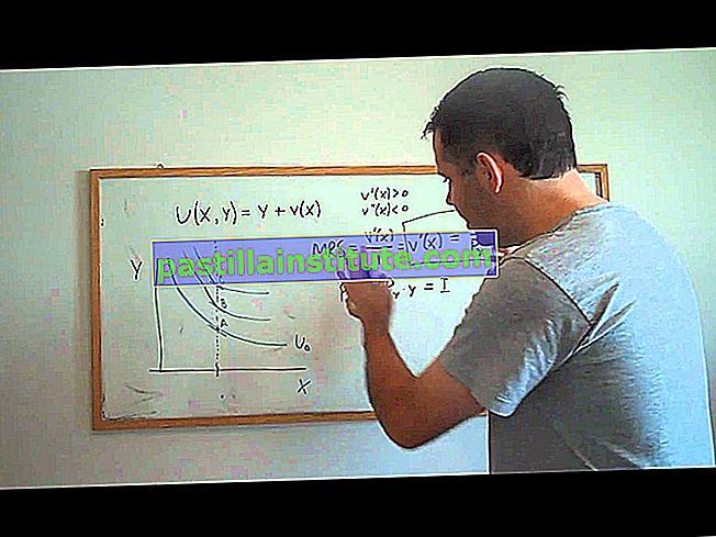 Von Neumann – Morgenstern yardımcı program işlevi