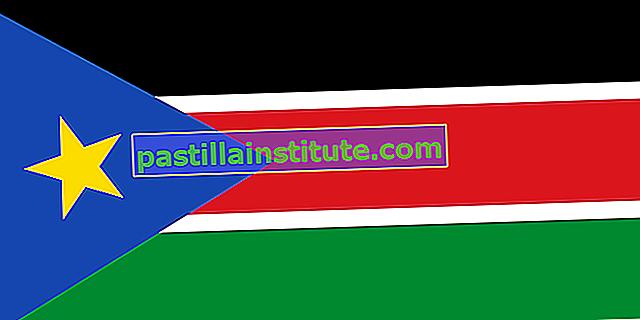 Знаме на Южен Судан