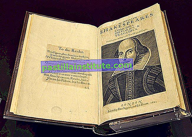 Första folio