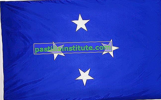 Mikronesiens flagga