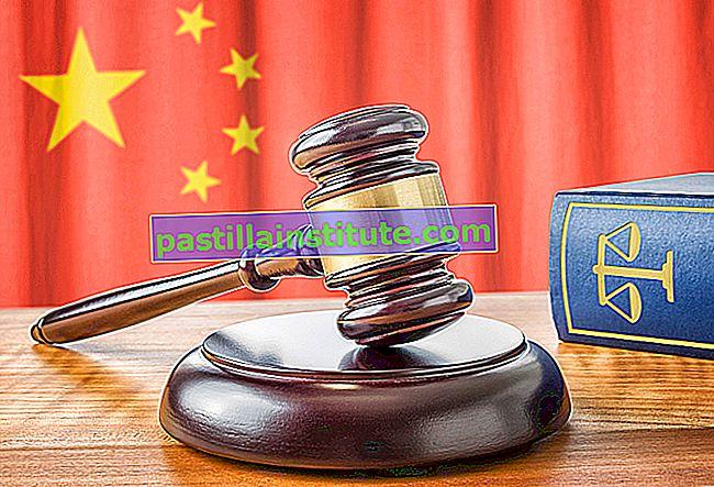 Kinesisk lag