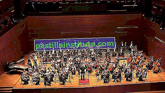 Sinfonia n. 5 in re minore op. 47