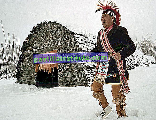 Langues iroquoiennes