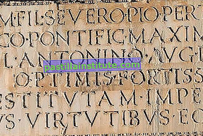 Vulgär latin