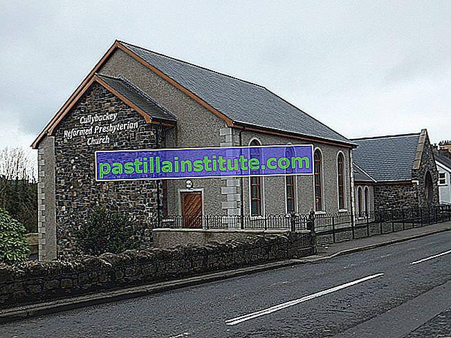 Reformerade och presbyterianska kyrkor