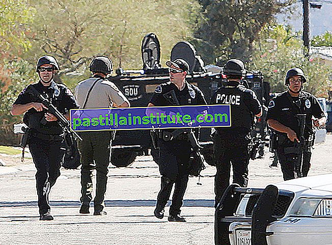 Дія поліції