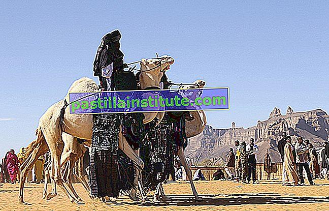 Budaya padang pasir