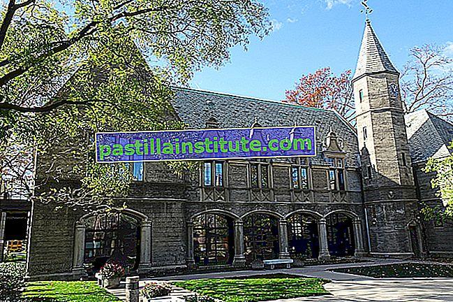 Université de Kean