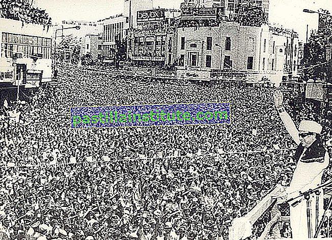Dravidian Progressive Federation