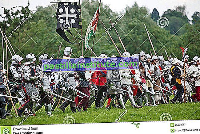Orden de los Hermanos de la Espada