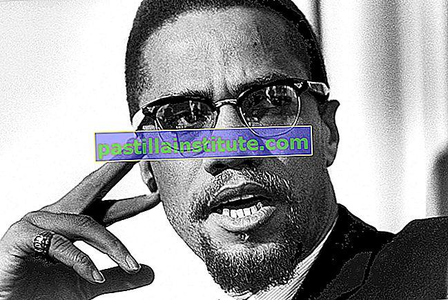Otobiografi Malcolm X