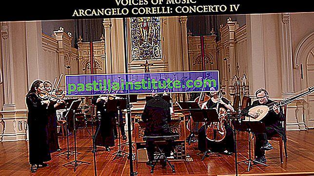 Konsert för två trumpeter i C dur