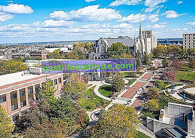 クレイトン大学