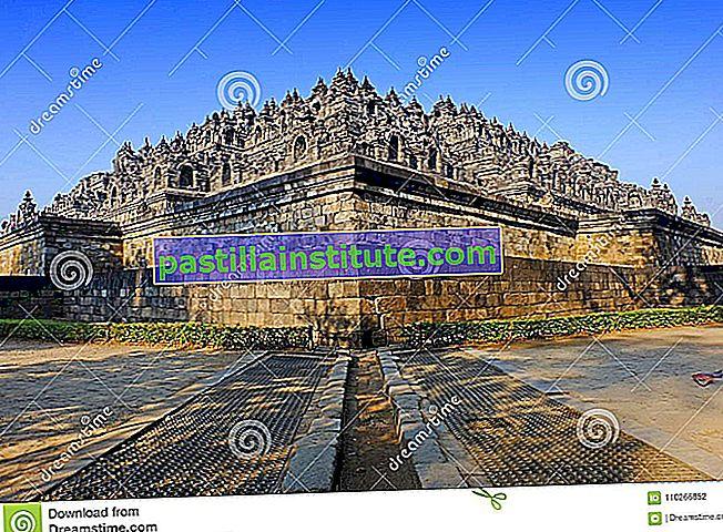 Dynastie Shailendra
