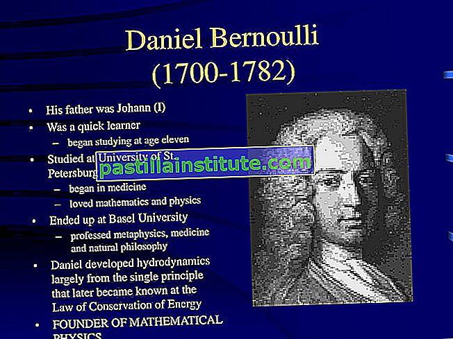 Bernoulli-familjen