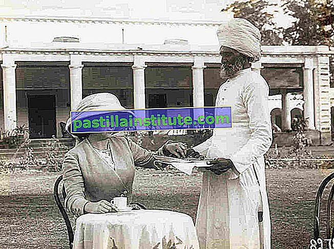 Tjänare av India Society