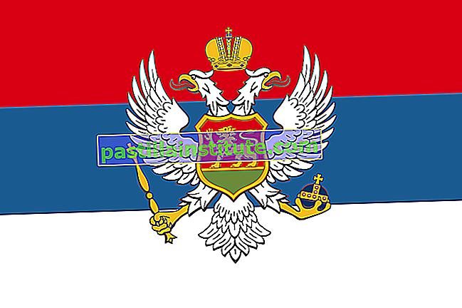 Знаме на Черна гора