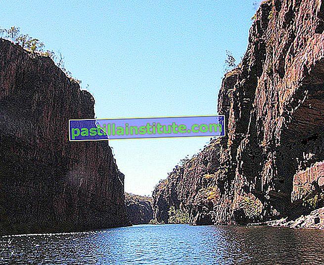 峡谷と峡谷のリスト
