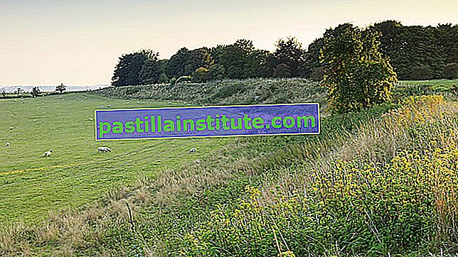 Durrington Walls