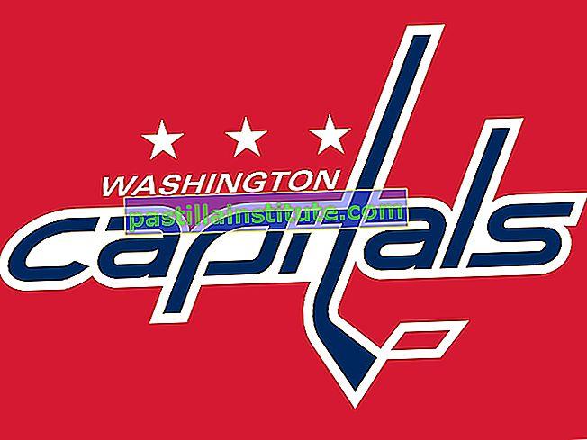 Ibu Kota Washington