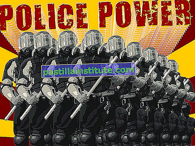 Полицейска власт