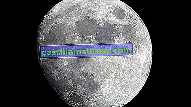 Från jorden till månen