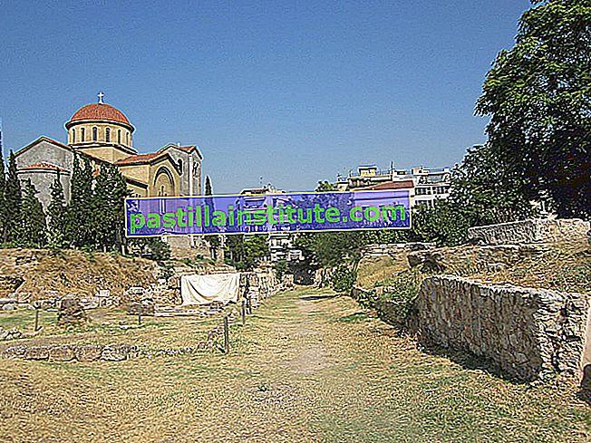 Akademi Platonis