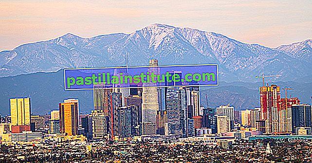 Resumen de la década de 1990 en Los Ángeles