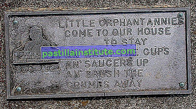 Orphan Annie น้อย