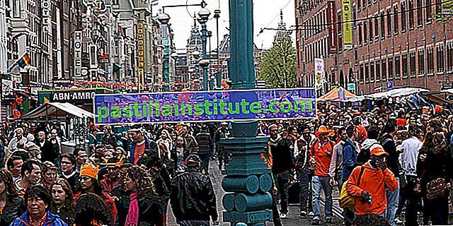 Hollanda dili