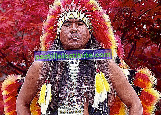 Noms de soi amérindiens