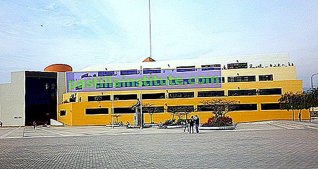 Universiti Nasional Utama San Marcos dari Lima