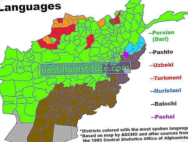 Bahasa Dari