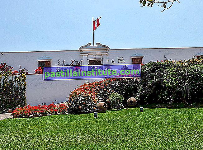 Museum Larco