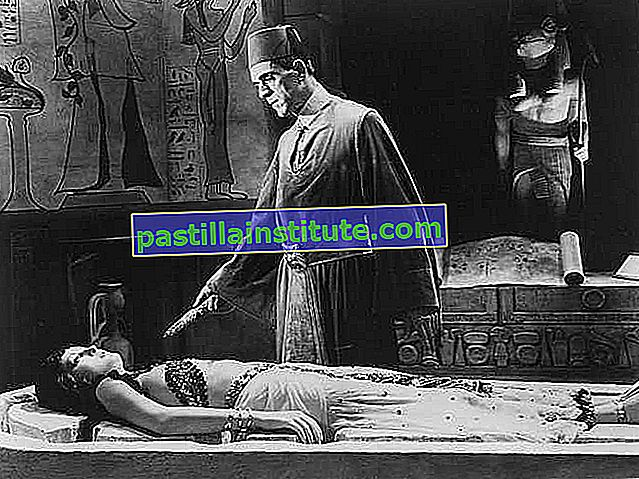 Boris Karloff och Zita Johann i The Mummy (1932), regisserad av Karl Freund.