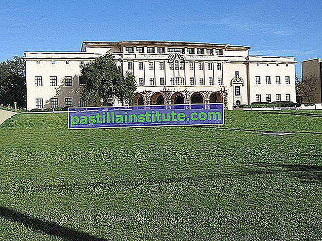 Institut de technologie de Californie