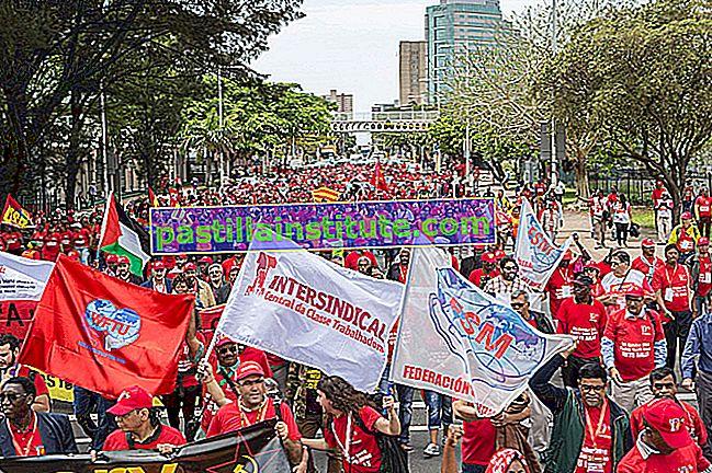 Världsförbundet för fackföreningar
