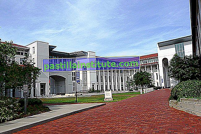 エモリー大学