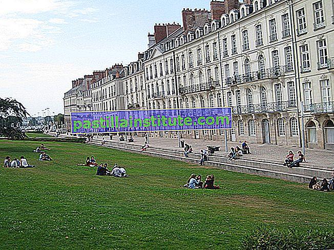 Università di Nantes
