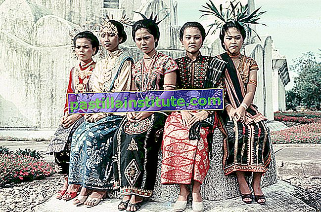 Acehnese