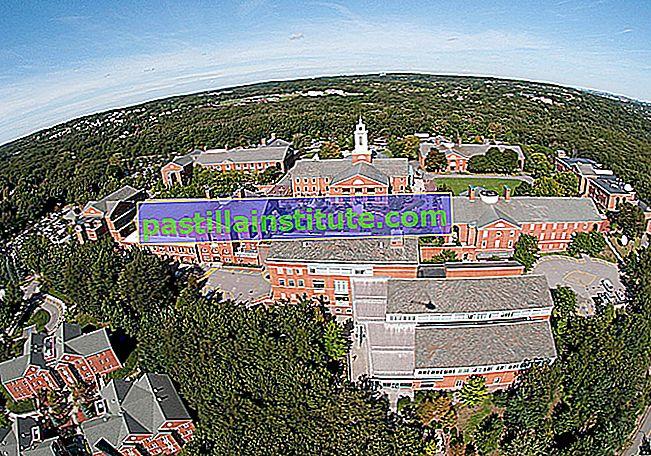 Đại học Bentley