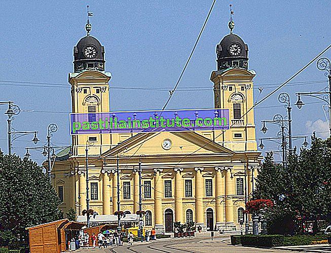 Macaristan'da Reform Kilisesi