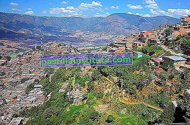 Danh sách các thành phố và thị trấn ở Colombia