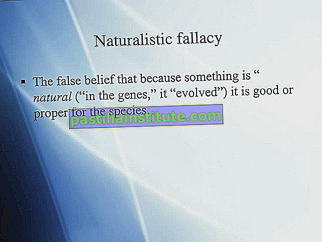 Kesalahan naturalistik