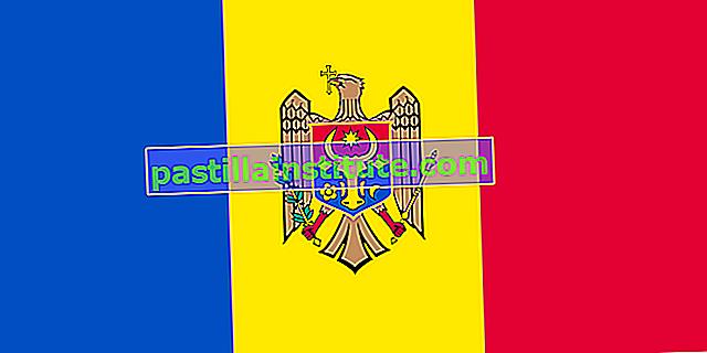 Moldaviens flagga