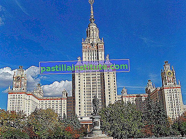 Moskva statsuniversitet